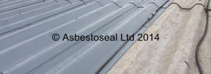 Contrast showing Asbestoseal roof coating after applied to cleaned roof sheets